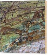 East Jordan 22 Wood Print