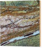 East Jordan 23 Wood Print
