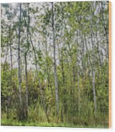 East Jordan 8 Wood Print