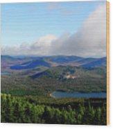 East Of Blue Wood Print