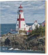 East Quoddy Lighthouse Wood Print by John Greim