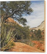 East Zion Afternoon Wood Print