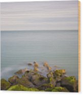 Eastbourne Sovereign Harbour Wood Print