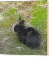 Easter Bunny 3 Wood Print