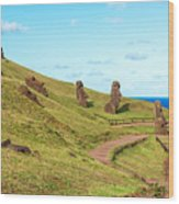 Easter Island Moai At Rano Raraku Wood Print