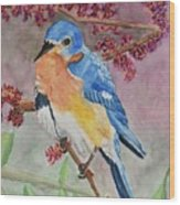 Eastern Bluebird Vertical  Wood Print