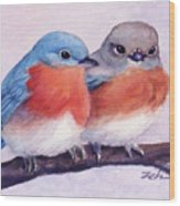 Eastern Bluebirds Wood Print