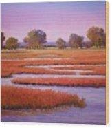 Eastern Shore Marsh Wood Print