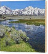 Eastern Sierra Mountains Wood Print