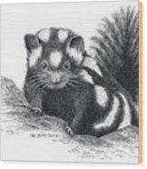Eastern Spotted Skunk Wood Print