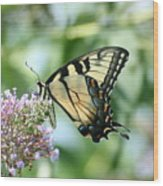 Eastern Tiger Swallowtail 2 Wood Print