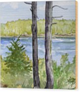 Eastport Maine Coastal Afternoon Wood Print