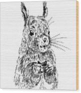 Eating Squirrel Wood Print