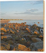 Ebb Tide On Cape Cod Bay Wood Print