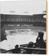 Ebbets Field, C1950 Wood Print