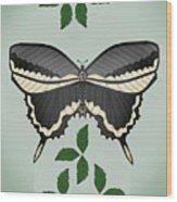 Ebony And Ivory Wood Print