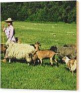 Ecclesia-the Joyful Flock Wood Print