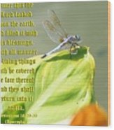 Ecclesiasticus Sixteen Twenty Nine Wood Print