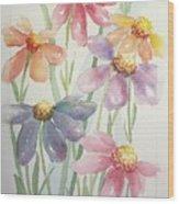 Echinacea Cheyenne Spirit Wood Print