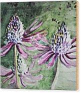 Echinacea Cone Flower Wood Print