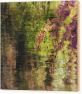 Echoes Of Monet - Cherry Blossoms Over A Pond - Brooklyn Botanic Garden Wood Print
