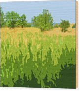 Eckert Skyline 1 Wood Print