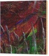 Eclpise II Wood Print