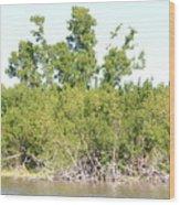 Eco Pond Wood Print