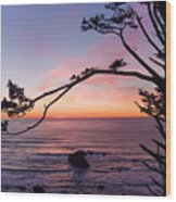 Ecola Park Sunset Wood Print