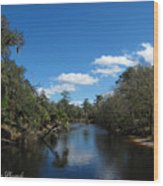 Econlockhatchee River Wood Print