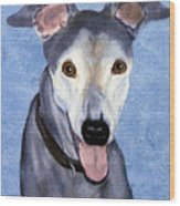 Eddie - Greyhound Wood Print
