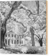 Eden Plantation A Florida State Park Wood Print