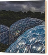 Eden Project Cornwall Wood Print