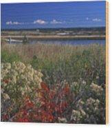 Edgartown Lighthouse Autumn Flowers Wood Print