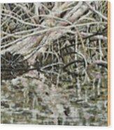 Edge Of Smith Lake Wood Print