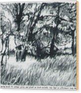 Edge Of Spring Wood Print