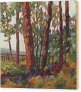Edge Of The Field Wood Print