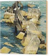 Edgewater Shores Wood Print