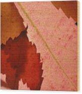 Edgy Leaves Wood Print