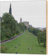 Edinburgh Park  Wood Print