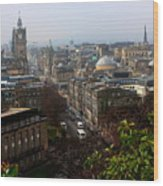 Edinburgh Princess Street Wood Print