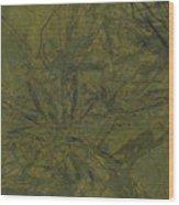 Edition 1 Kelp Wood Print