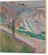 Edvard Munch , Landscape, Kragero Wood Print