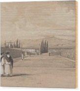 Edward Lear - The Gardens Of The Villa Albani Wood Print