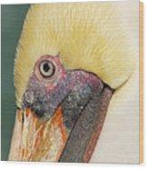 Edward Wood Print