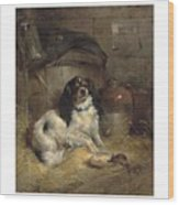 Edwin Douglas 1848-1914 A Cavalier King Charles Spaniel Wood Print