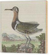 Een Gedetailleerd Landschap Wood Print