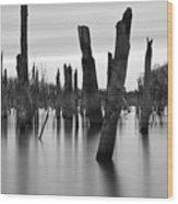 Eerie Lake Wood Print