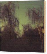 Eery Park Wood Print