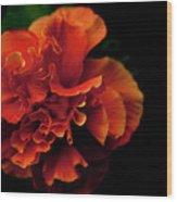 Efflorescence Wood Print